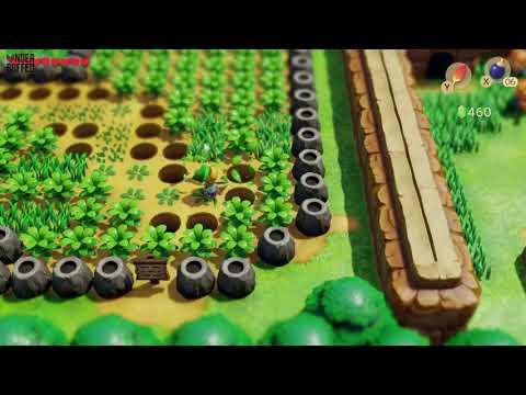Link's Awakening - Heart Piece (Pothole Field)