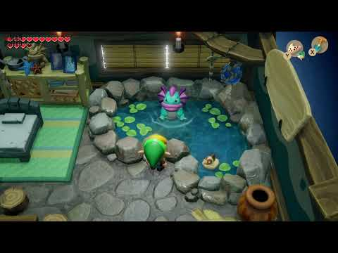 Link's Awakening - Secret Seashell (Animal Village)