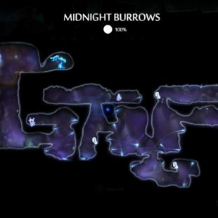 Midnight Burrows 100% – Ori and the Will of the Wisps